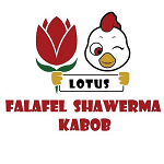 Lotus Falafel & Shawerma