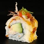 Sushi Go Go